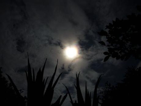 不思議な雲:写真日記